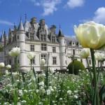 istana bunga